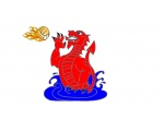 Cwm Draig Water Polo Club