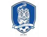 Belfast City FC