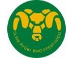 Clwb Rygbi Bro Ffestiniog