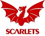 Scarlets Rugby.info