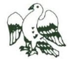 Shipton-under-Wychwood Cricket Club