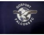 Gosport Falcons Black FC U14's