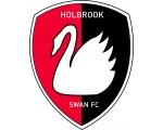 Holbrook Swan