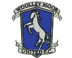 Woolley Moor United FC