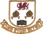 Clwb Rygbi Betws RFC