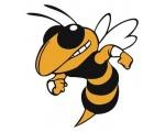 Kendal Hornets RUFC