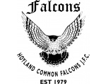 Hoyland Common Falcons JFC