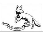 Bedlinog RFC