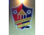 Bingham Town Football Club