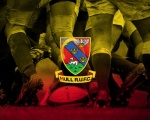 Hull Rugby Union Football Club