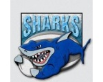 Bucks County Sharks RLC