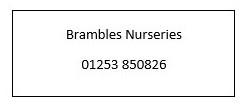 Brambles Nursery