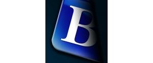 Balgores Property Group