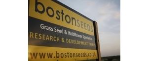 Boston Seeds