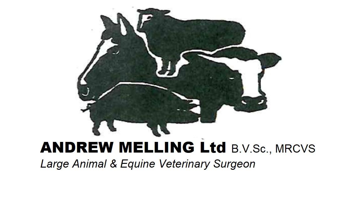 Andrew Melling Ltd