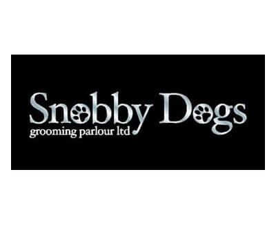 Snobby Dogs
