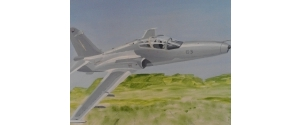 Botswana Aviation Art