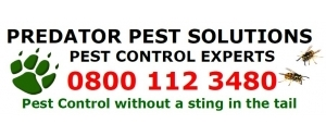 Predator Pest Solutions