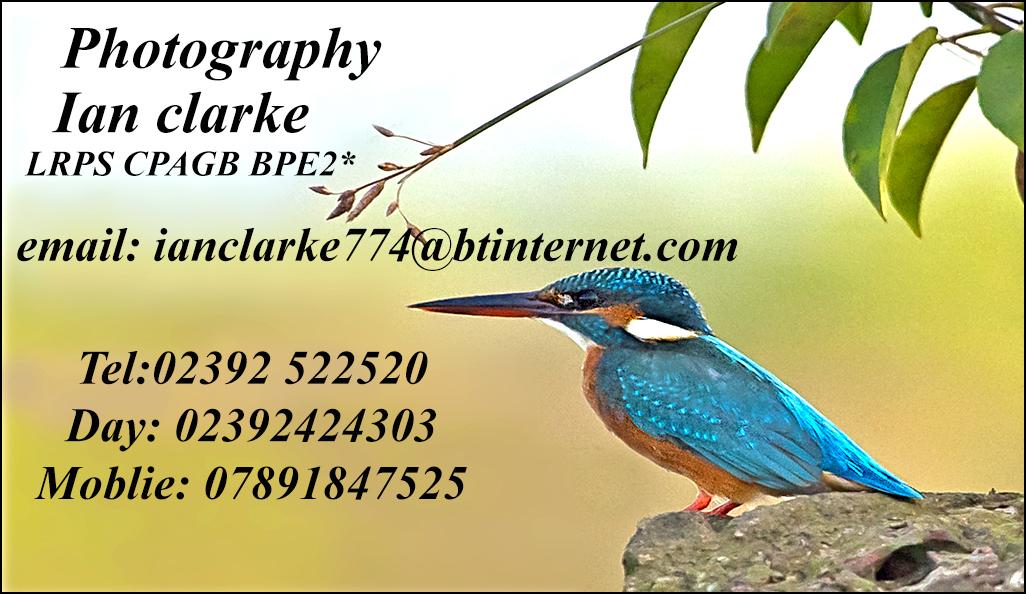 Ian Clarke Photography