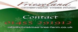 Friezeland Farm Christmas Trees
