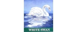 The White Swan, Connington