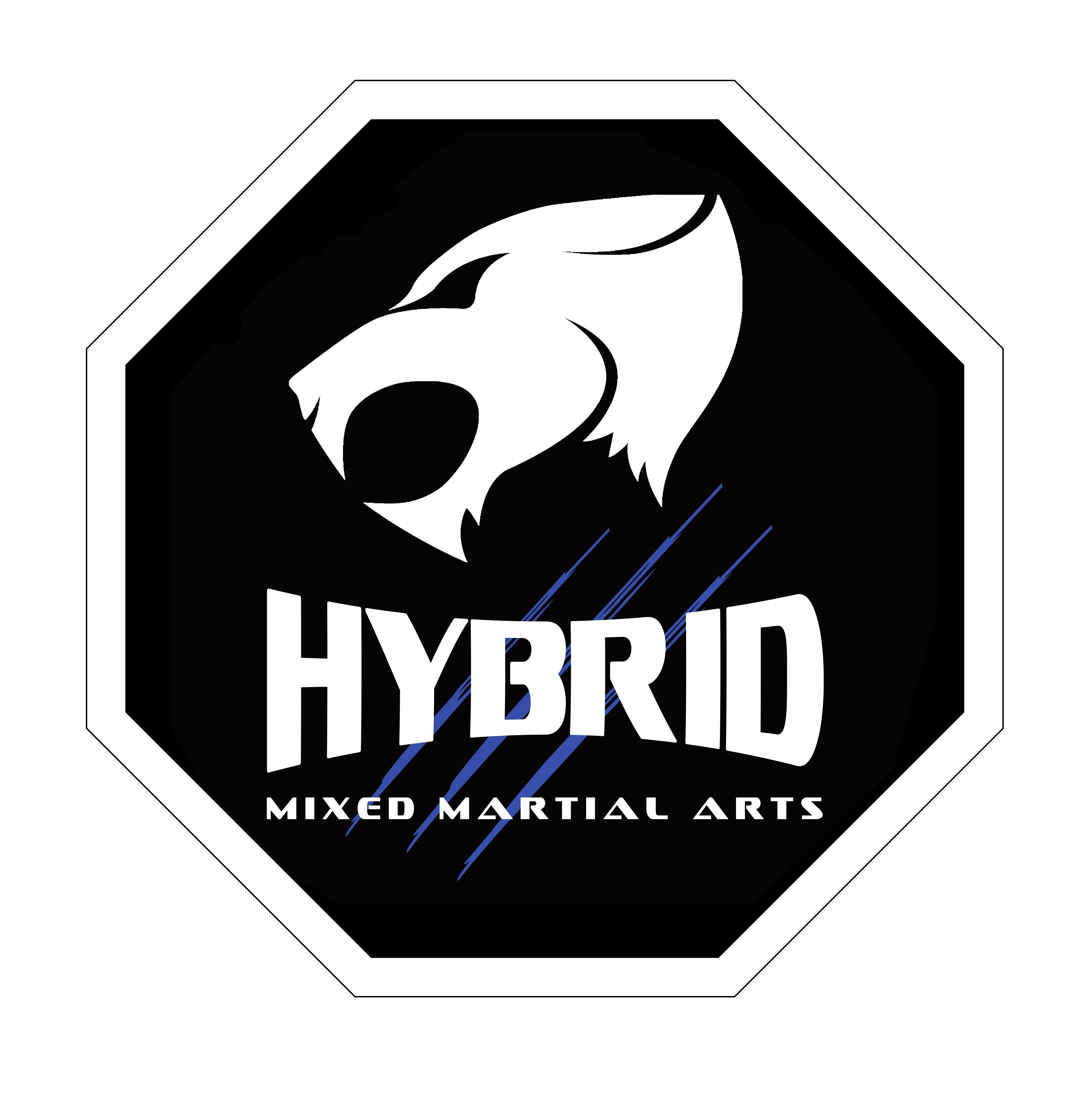 Hybrid MMA Gym