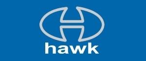 Hawk Cricket