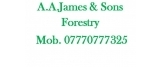 A.A.James & Sons Forestry