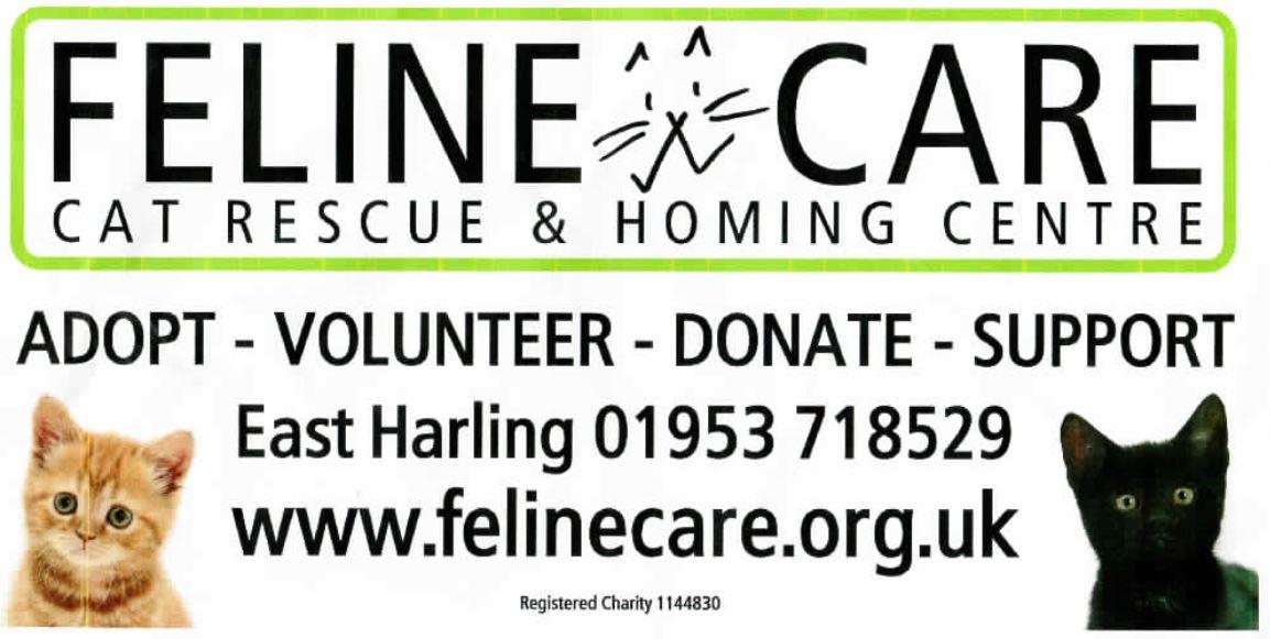 Feline Care