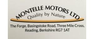Montelle Motors LTD