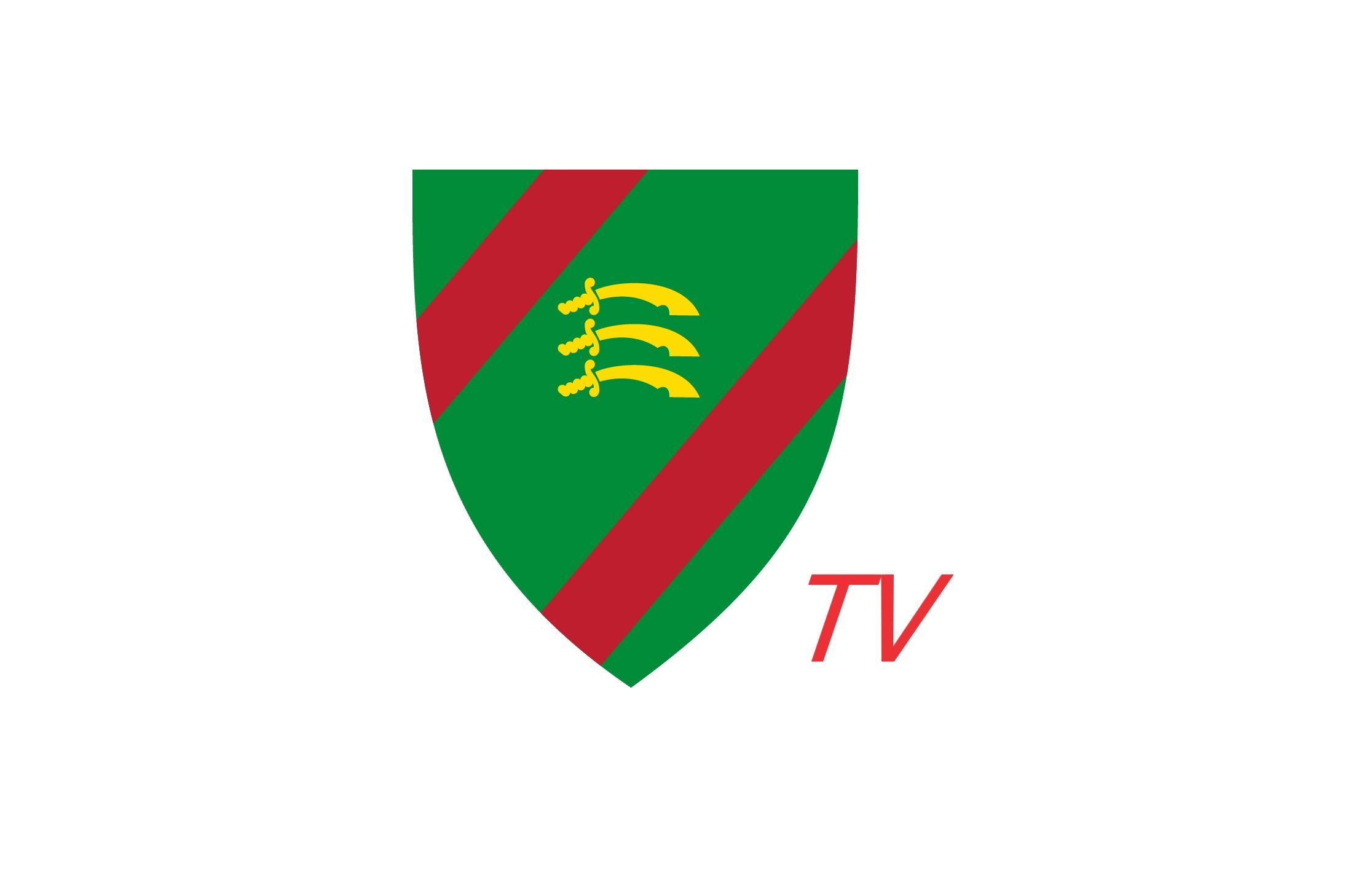 Ealing CC TV