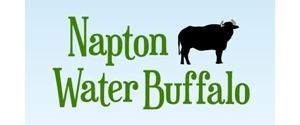 NAPTON WATER BUFFALO