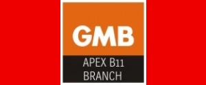 GMB Apex B11 Union