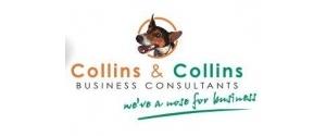 Collins Consulting Ltd