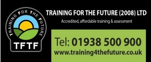 Training for the Future