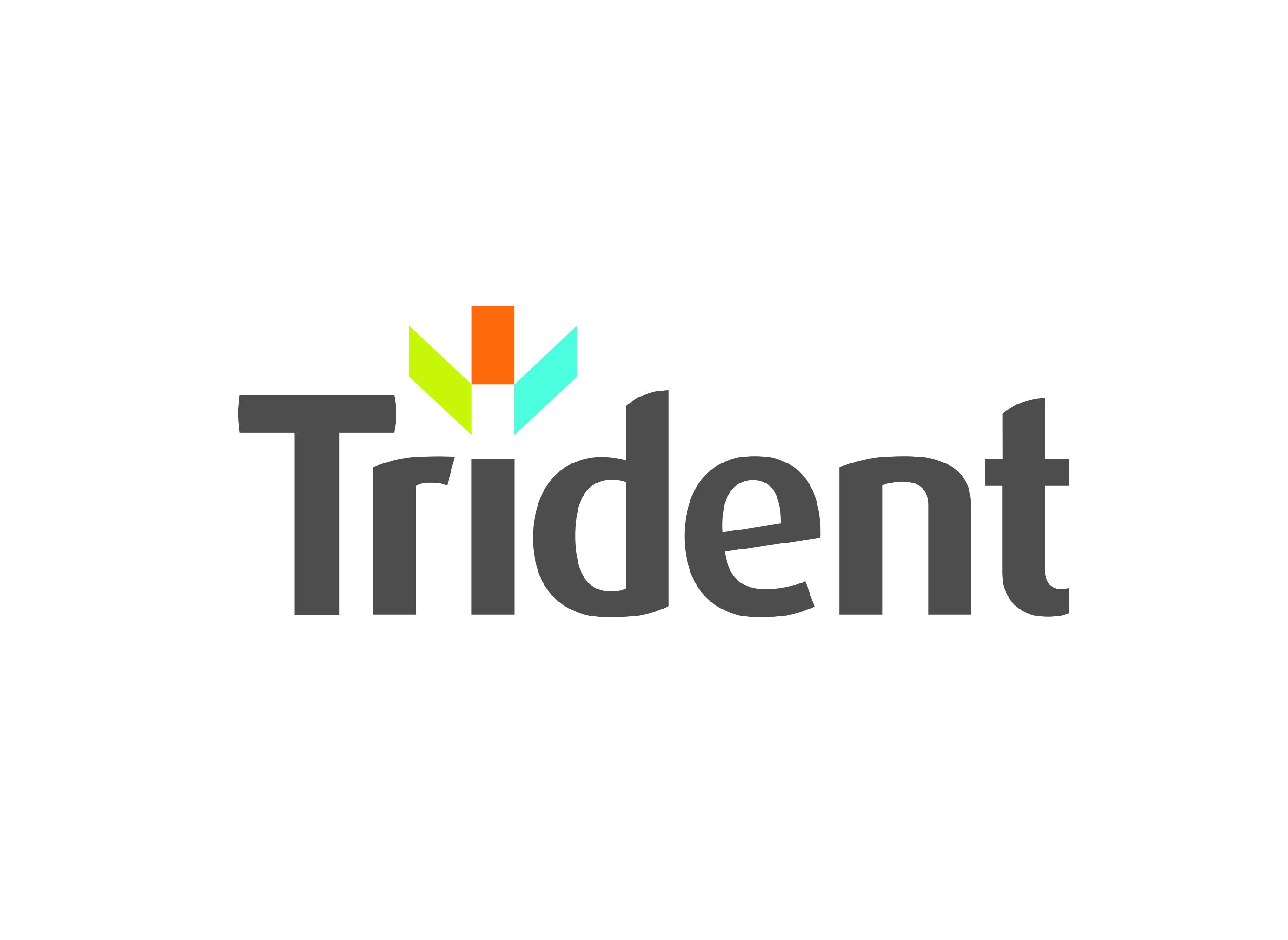 Trident Building Consultancy