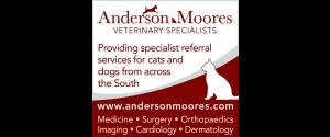 Anderson Moores Veterinary Specialists