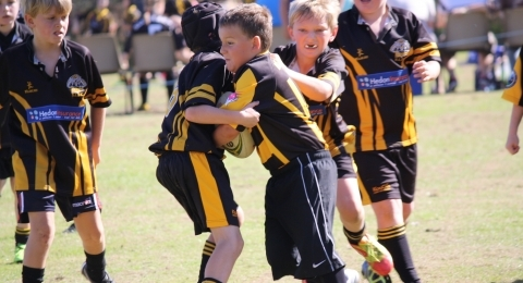 Immingham Wasps Junior Rugby Club banner image 6