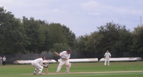 Thorpe Audlin Cricket Club banner image 1