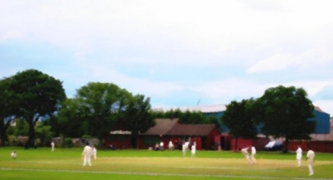 Leith F.A.B. Cricket Club banner image 4