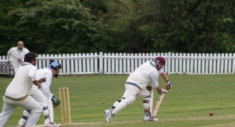 Mill Hill Village Cricket Club banner image 3