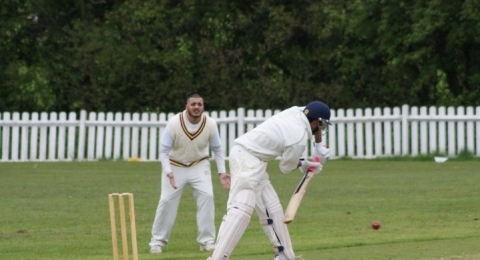Mill Hill Village Cricket Club banner image 5