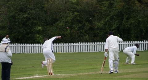 Mill Hill Village Cricket Club banner image 2