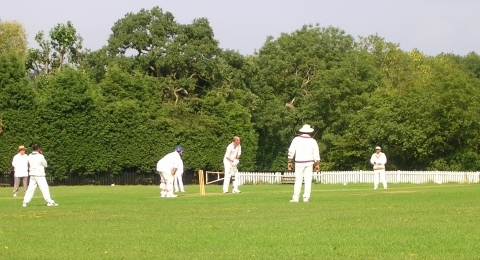 Mill Hill Village Cricket Club banner image 6