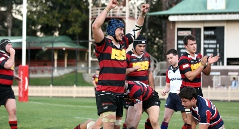 Northern Suburbs RFC banner image 7
