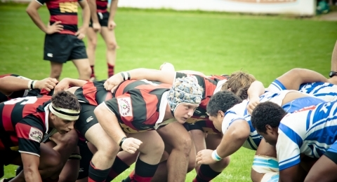 Northern Suburbs RFC banner image 4