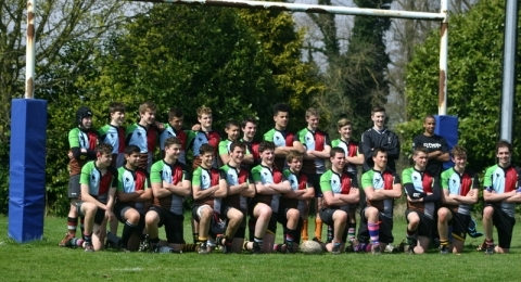 Harlequin Amateurs Rugby Club banner image 2
