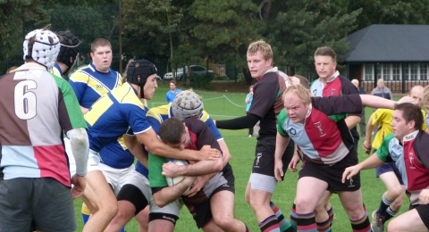 Harlequin Amateurs Rugby Club banner image 7