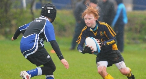 Strathaven Rugby Football Club banner image 9