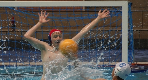 Welsh Wanderers Water Polo Club banner image 9